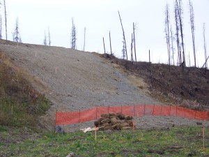 Graded and re-contoured slope south side of Beaver, October 2007