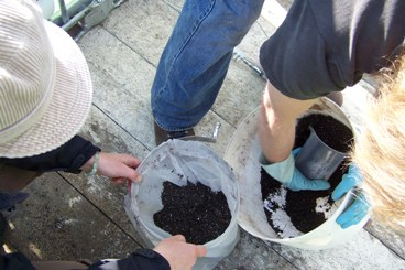 Preparation of compost for tea brewing
