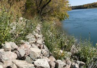 Vegetated rip rap, North Saskatchewan River